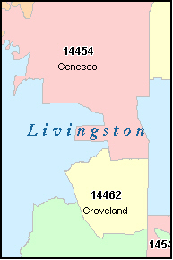 Livingston county coupons